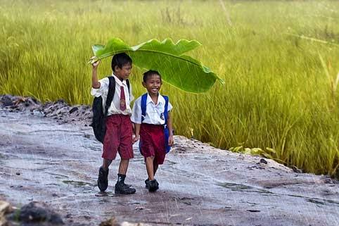 Hujan Turun, Petani Senang