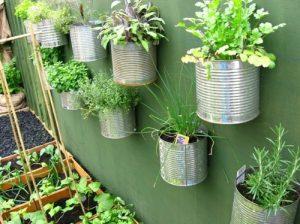 Buat kebun vertikal dari kaleng bekas