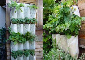 vertical-garden-1